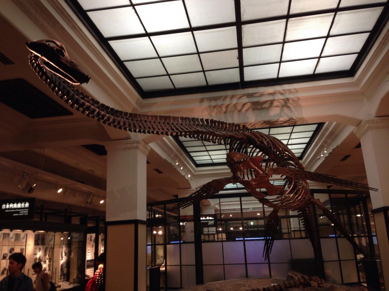 こどもとおでかけ-東京・上野「国立科学博物館」で好奇心を育てよう。自由研究の素材探しにも!