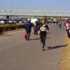 葛飾区民ふれあい駅伝で走ってきました (週ログ 2014/11/24)