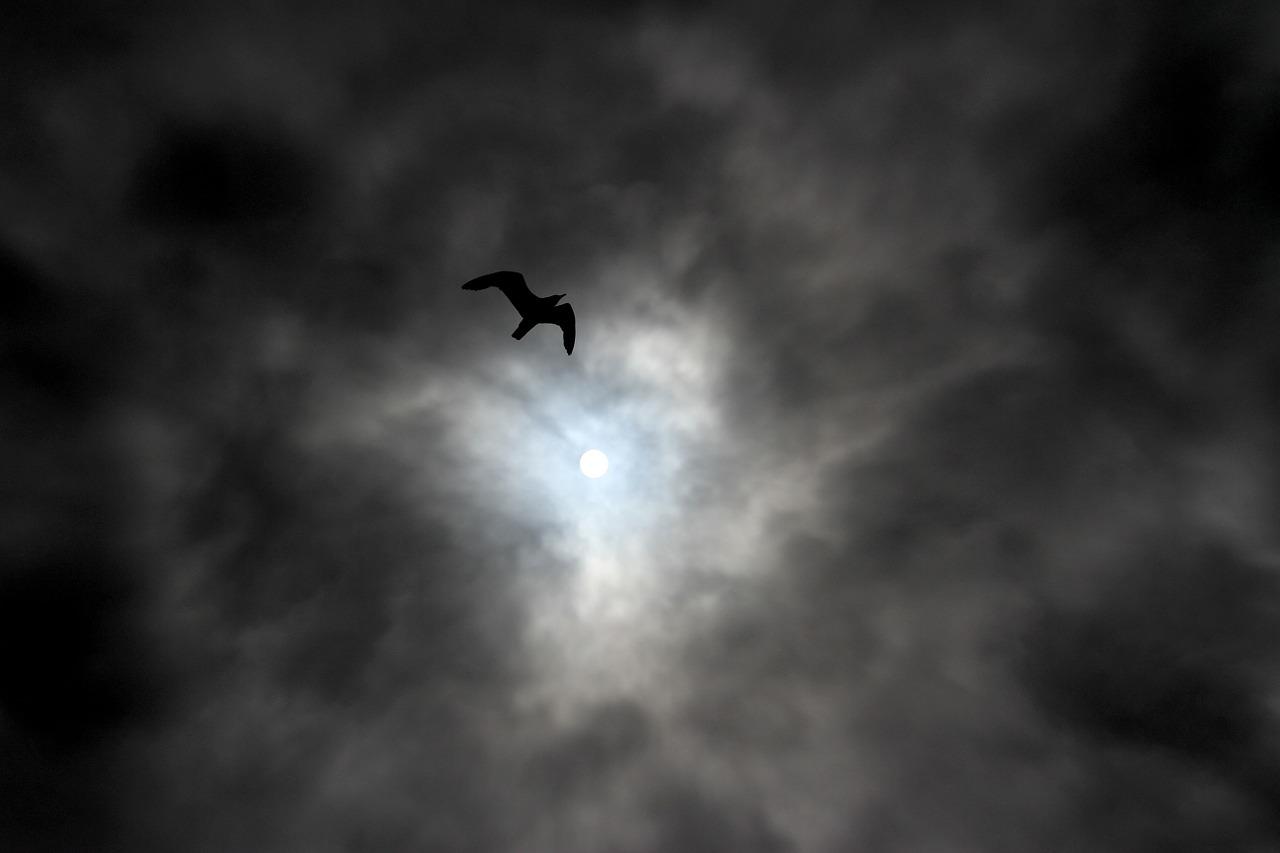 sky-217958_1280