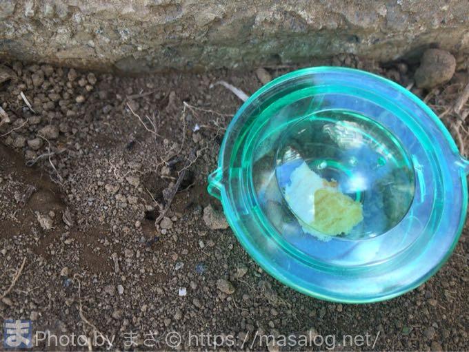 アリの巣のそばに設置